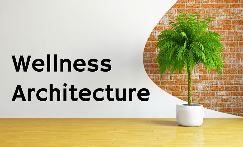 wood floor against brick wall with white artistic drywall and potted green palm tree plant wellness architecture