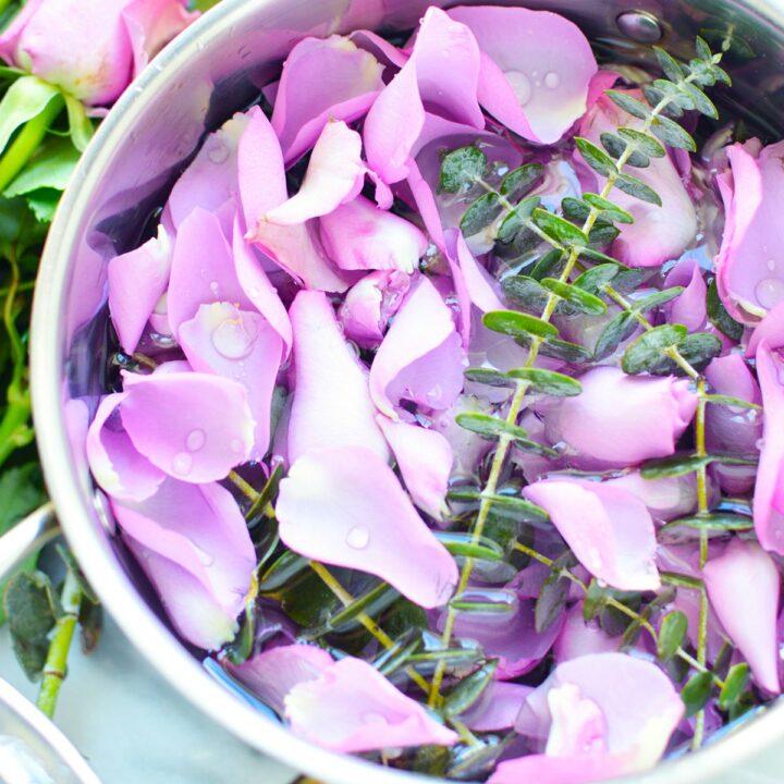 simmer pot full of rose petals eucalyptus leaves natural air freshener