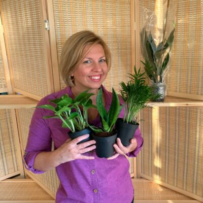Best Place to Buy Indoor Plants Online (It Might Surprise You!)
