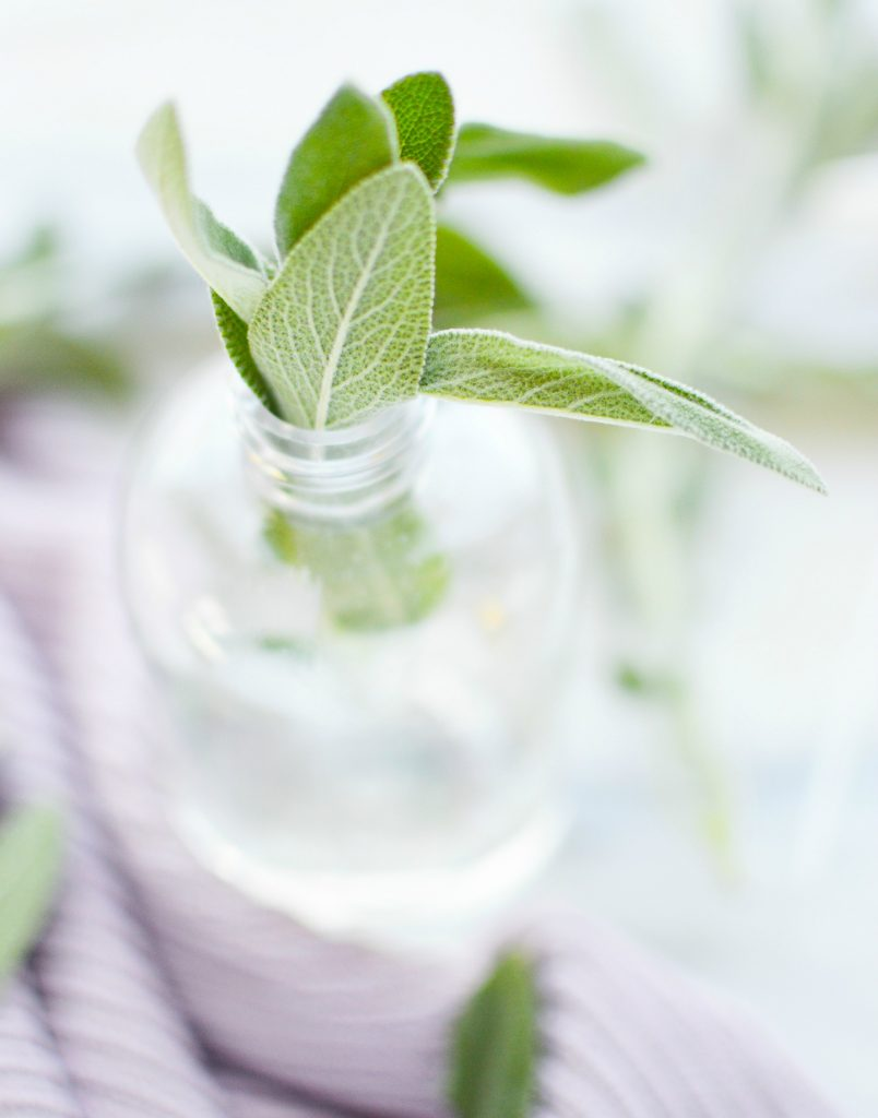 sage leaves in glass spray bottle