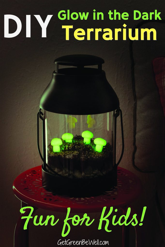 glow in the dark mushrooms in lantern terrarium
