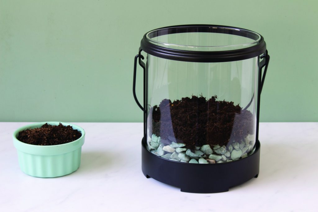 peat moss in glass lantern for terrarium