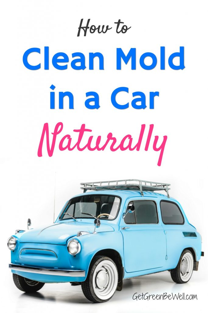How To Clean Mold in A Car Naturally - Get Green Be Well