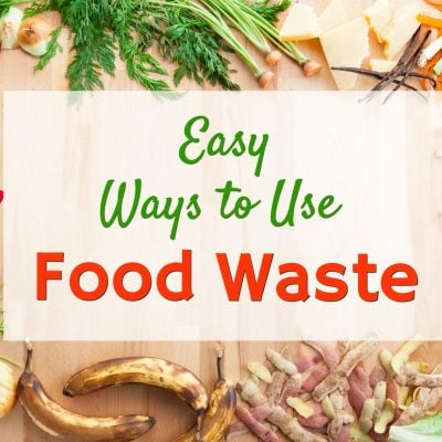 19 Ways to Reuse Food Waste