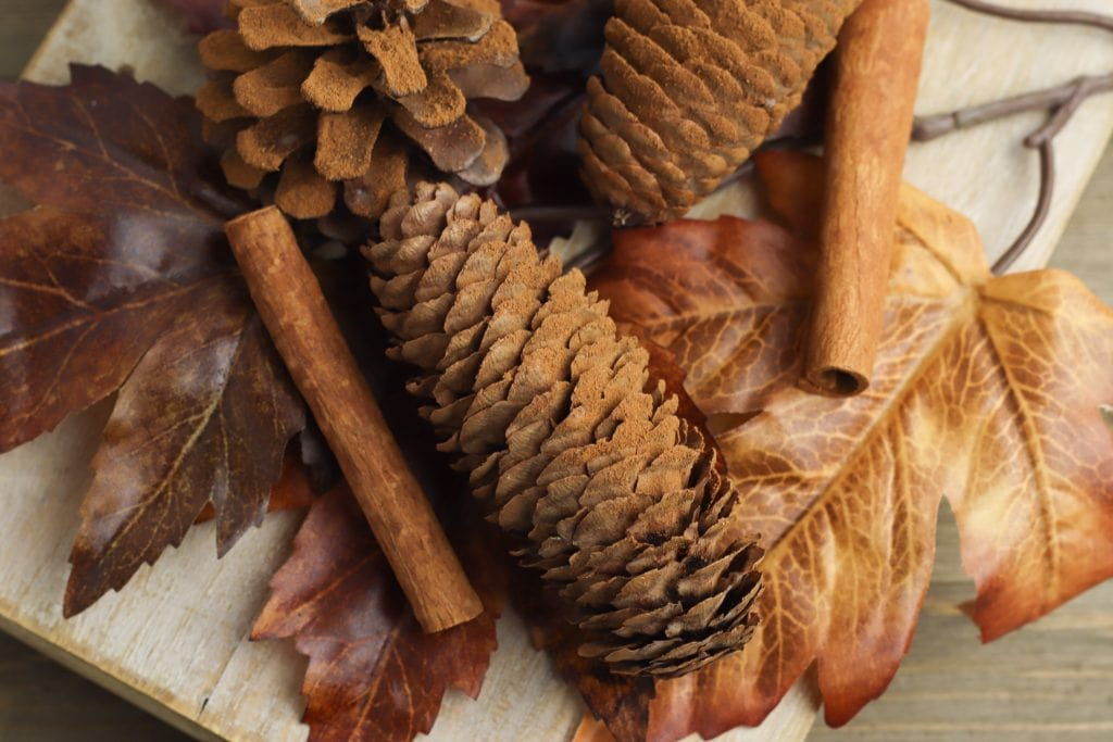cinnamon covered pine cones on wooden cutting board with fall leaves