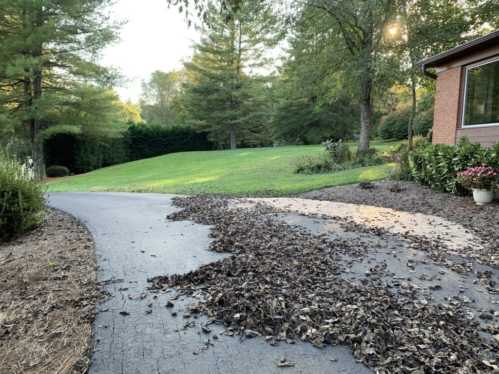 piles of dead leaves on driveway