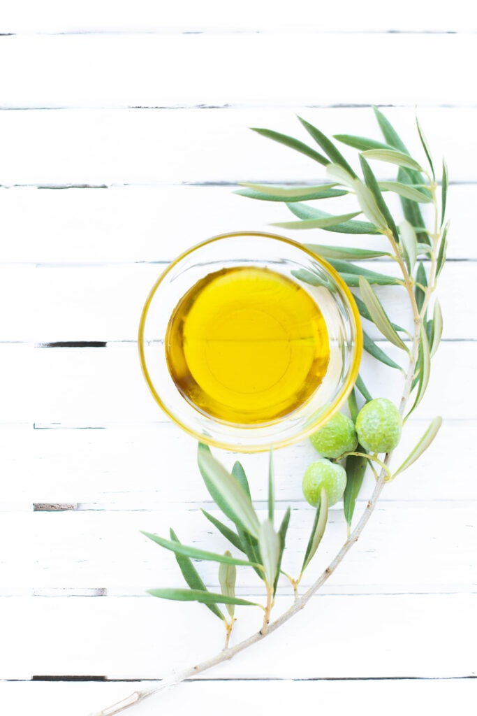 olive oil in glass jar near olive tree branch on white background