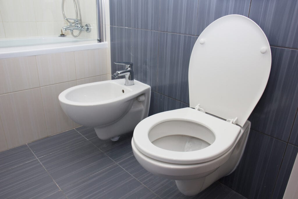 toilet and bidet in the gray bathroom
