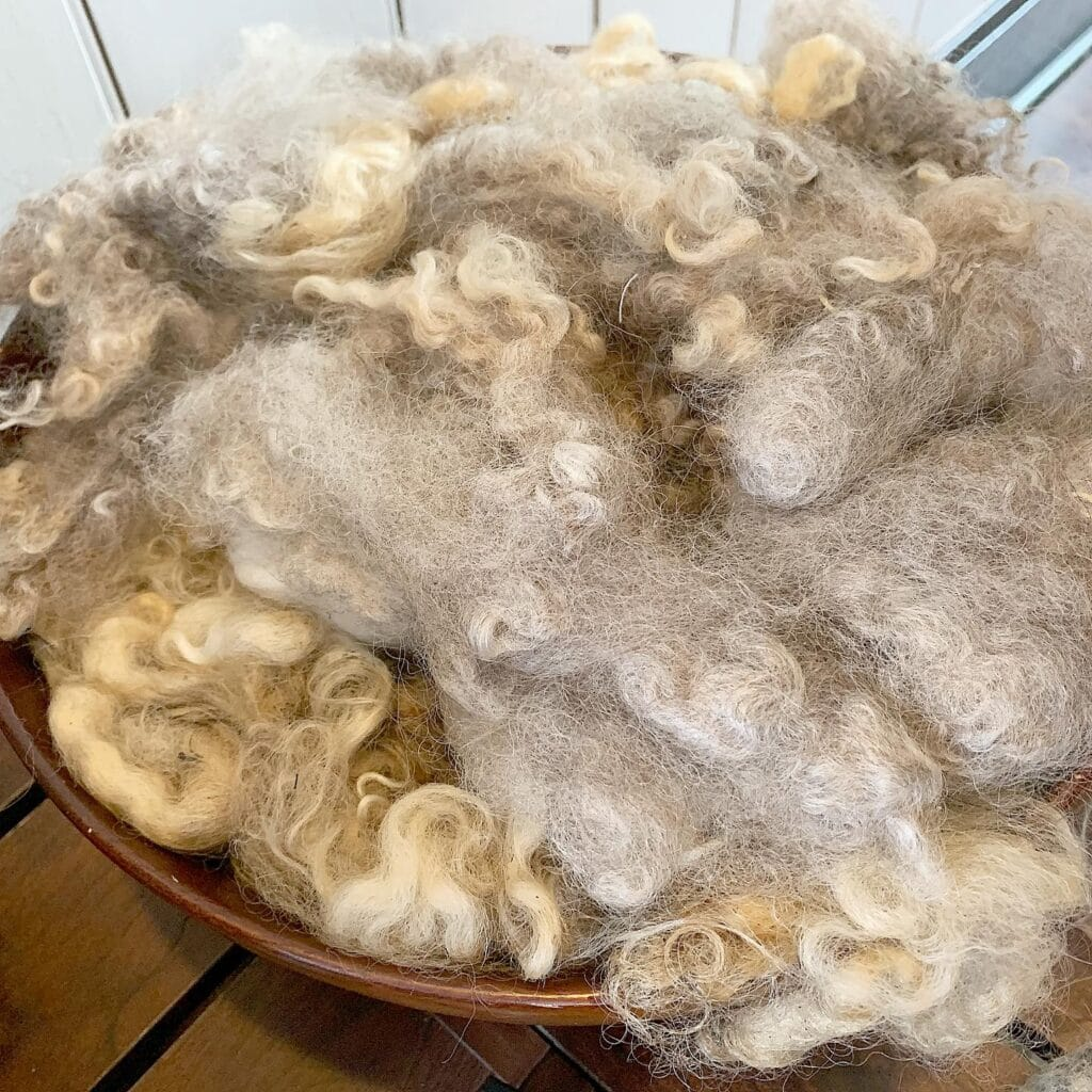 wooden bowl filled with sheep wool