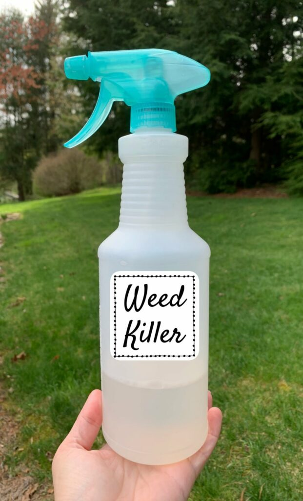 woman holding plastic spray bottle